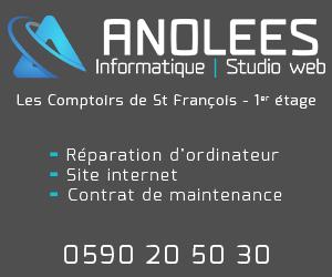 Anolees Informatique
